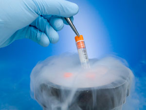 Egg Freezing India, Cost Egg Freezing Mumbai India, Female Egg Freezing, Freezing Eggs, Egg Freezing Facts, Extend Fertility, Egg Freezing, Pregnancy & Fertility Advice, Pregnancy & Fertility Forum Pregnancy & Fertility Tips
