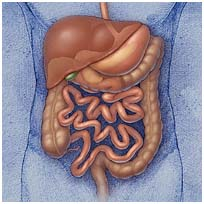 Colorectal Surgery India, Cost Colorectal Surgery Bangalore India, Colorectal Surgery Cost India, Colorectal Surgery Delhi India, Colorectal Surgery mumbai India, Colorectal Surgery Symptoms, Colorectal Surgery Cause, Colorectal Surgery Hospital Delhi India