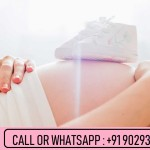 Surrogacy fee in India